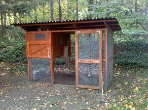 Backyard Garden Chicken Coop