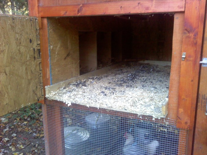 Garden Coop with Modified Cleanout Door