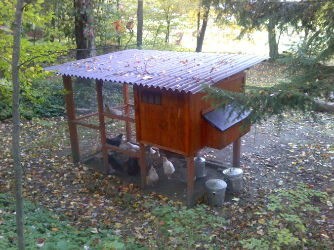 Garden Coop Modification: Ondura Roof
